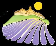 Mes vacances en Provence